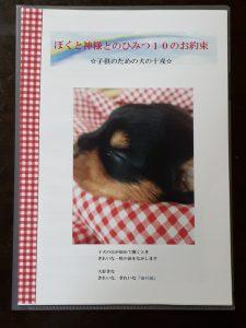 ヨークシャーテリア可愛い子犬写真、」
