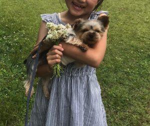 ヨークシャーテリア可愛い子犬と女の子写真、